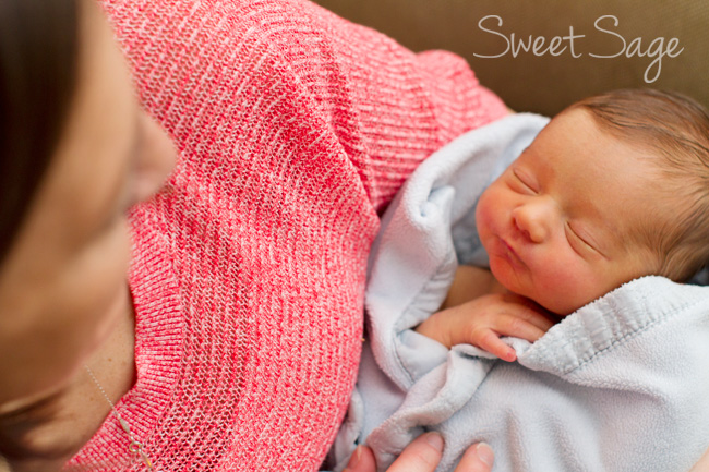 Madison Newborn Photography